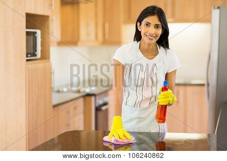 attractive indian housewife cleaning the kitchen
