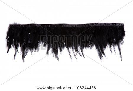 Black decorative feathers, isolated on white background