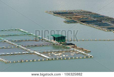 Fish Farming, Fish Tank, Daklak, Vietnam