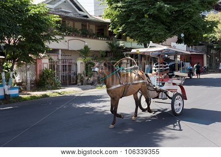 Horse Drawn Carriage In The Streets Of Manado