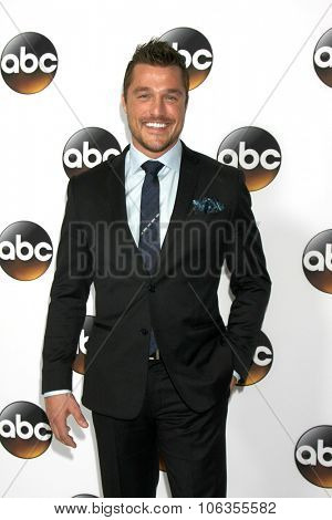 LOS ANGELES - JAN 14:  Chris Soules at the ABC TCA Winter 2015 at a The Langham Huntington Hotel on January 14, 2015 in Pasadena, CA