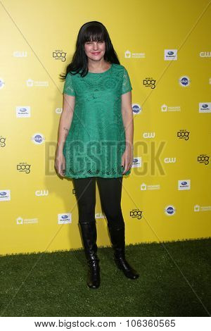 LOS ANGELES - JAN 10:  Pauley Perrette at the CW Network presents