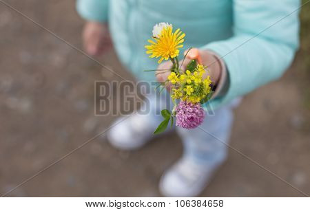 Bouquet Of Different Flowers In Hand Of Little Girl