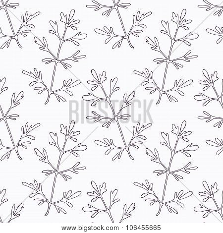 Hand drawn ruta or rue branch outline seamless pattern