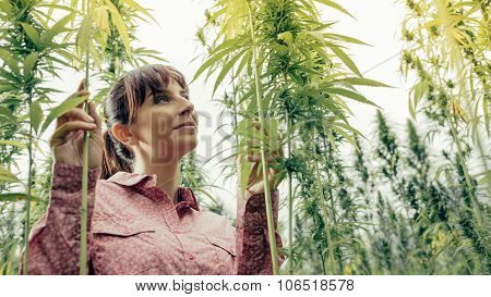 Smiling Woman In A Hemp Garden
