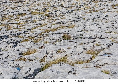 Uniquely Stark Beautiful Karst Landscape Of The Burren
