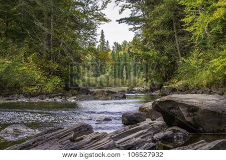 River Running Through A Forest In Early Fall