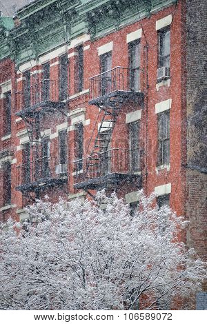 Hells Kitchen Building And Snow Covered Tree, Winter, New York