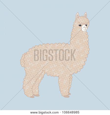 Cute knitted alpaca