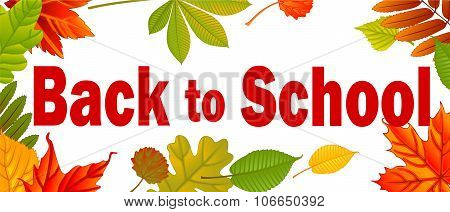Banner Back to school. Autumn background with leafs. Vector illustration.