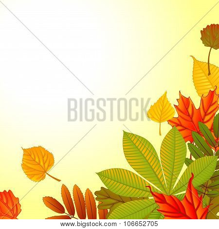 Autumn abstract background with leaf. eps 10