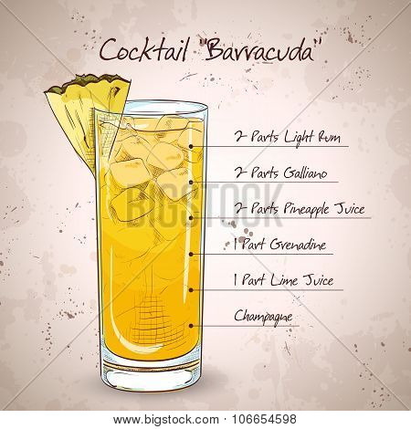 Hard drink Cocktail Barracuda