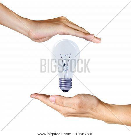 Light Bulb Between Two Hands