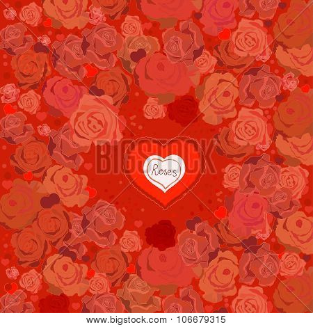 Roses pink illustration