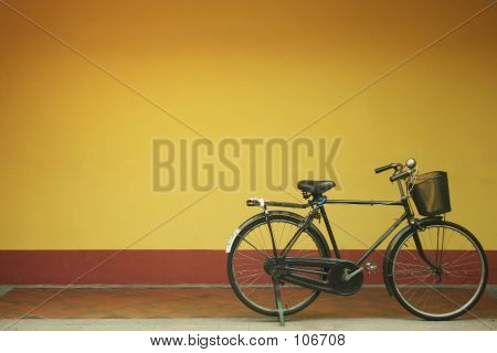 Rustic Bicycle