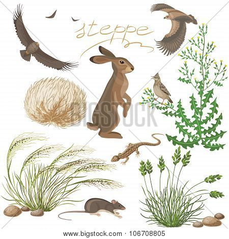 Steppe Plants And Animals Set