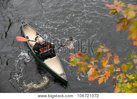 Outdoorsy Man In A Kayak In The Fall
