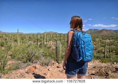 Wanderlust And Desert Travel