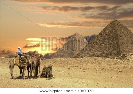 People Ath The Great Pyramids
