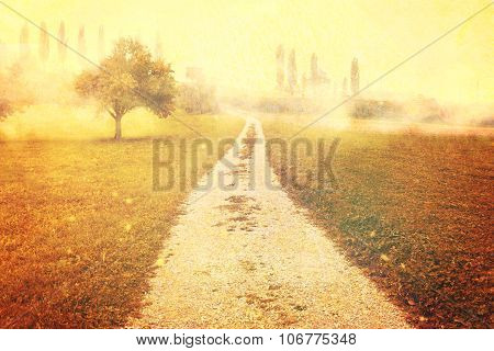 Footpath At Fogy Landscape With Fruit Trees In Vintage Style