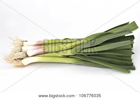 Young green garlic