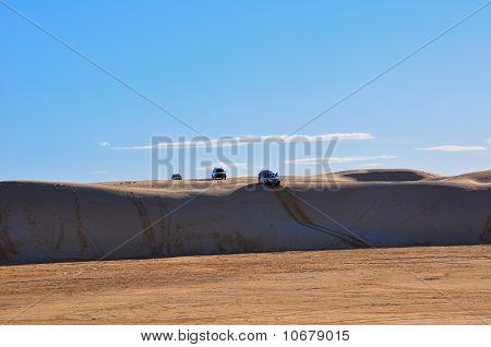 Car safari in the Sahara