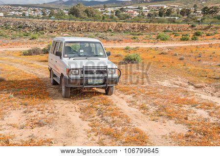 Vehicle Between Wild Flowers