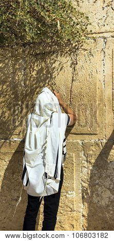 Unidentified Jewish Worshiper In  Tallith  Praying At The Wailing Wall An Important Jewish Religious