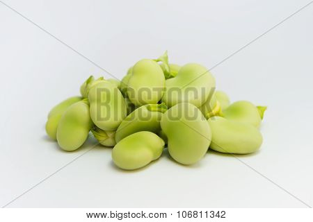 Fresh green broad beans