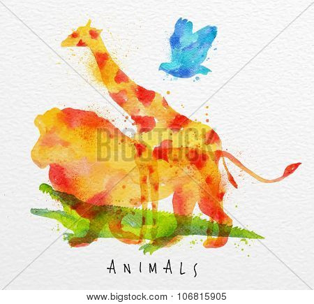 Overprint Animals Lion