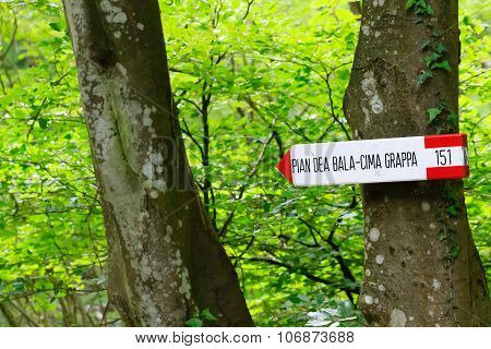 Close up of an isolated signboard along a trekking path. Direction indication. Arrow poster