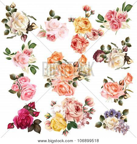 Mega Collection Of High Detailed Vector Flowers For Design