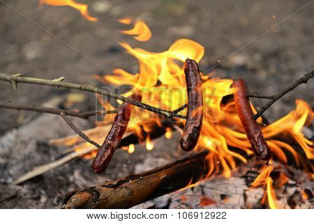 Sausages on fire in the wood