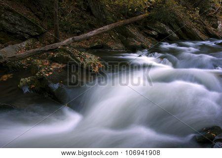 Natahala Autumn Flow