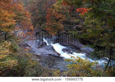 Autumn River In Nikko, Japan
