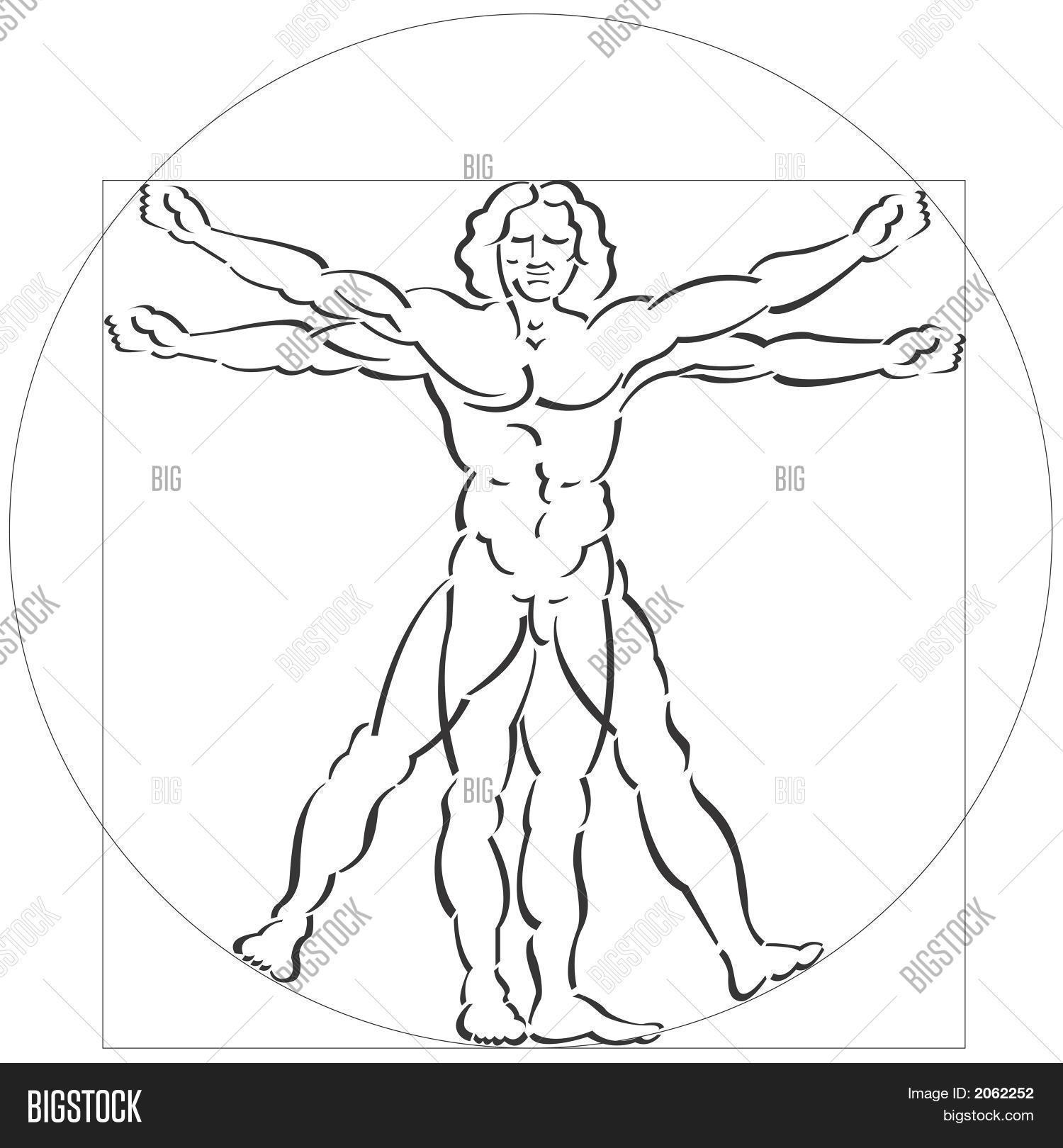 Vitruvian Man Vector & Photo (Free Trial) | Bigstock