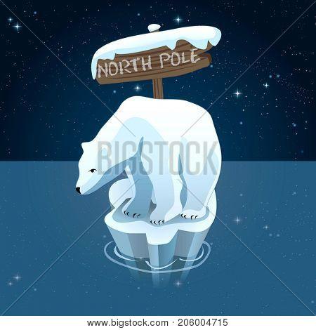 Polar bears in north pole