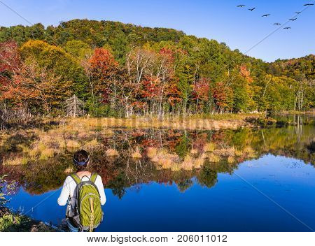 Woman -  tourist with a green backpack on her shoulders - admires the beautiful lake. Flock of migratory birds flies over the lake. Concept of ecological and active tourism