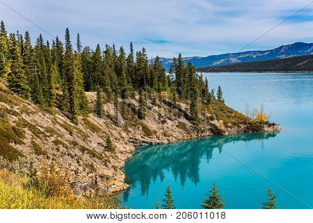 Abraham Lake is the most beautiful in the Rockies of Canada. Warm sunny day in autumn. The concept of ecological and active tourism