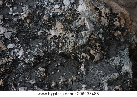 Grey stone background - grunge texture