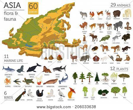 Geography Asia_19