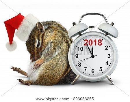 2018 New year funny Chipmunk in red Santa hat with clokc