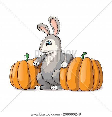 Cute rabbit cartoon illustration with two big orange pumpkins