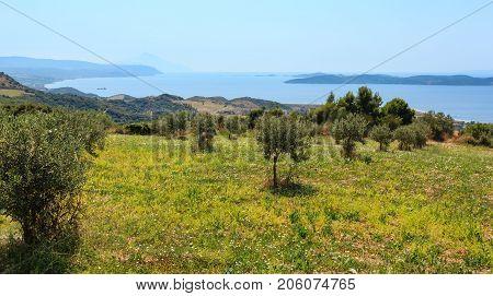 Summer Seascape (halkidiki, Greece).