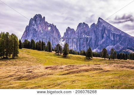 The Alps di Siusi. Jagged rocks of the Dolomites rise in the horizon of mountain valley. Well-known international ski resort in the fall. Concept of active and ecological tourism