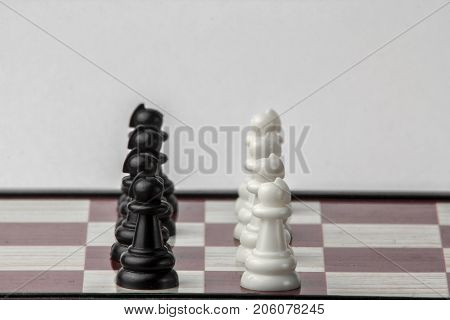 chess black and white pawns face to face. concept of struggle. Isolated on white background.