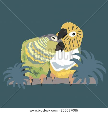 Two cute parrots enjoy their time together. Green Cheek Conures. Vector Illustration