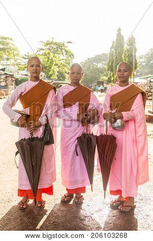 Yangon, Myanmar - September 29, 2016: Buddhist nuns in Yangon, Burma
