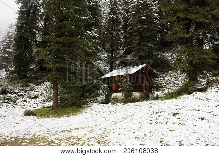 Hut In Pine Forest At Top Of Mountain In Kaunergrat Nature Park
