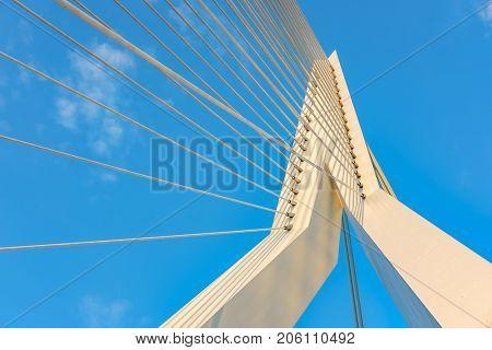 Erasmus bridge in Rotterdam city. South Holland, Netherlands.